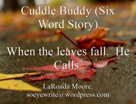 cuddle-buddy-six-word